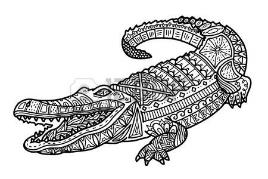 Image result for crocodile line art